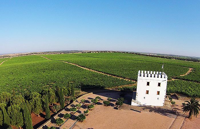 ILC-blog-Private-Tours-Lisbon-Wine-Tasting-Tours-Evora-with-Cartuxa-Wine-Cellar-Visit