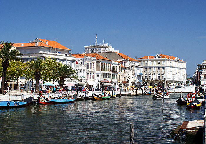 ilc-blog-private-tours-porto-day-trip-coimbra-aveiro