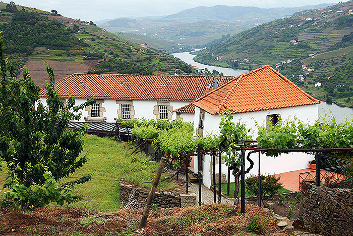 ilc-blog-private-tours-porto-day-trips-douro-wine-country
